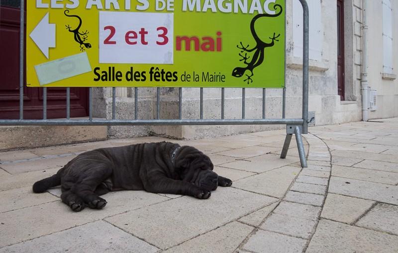 Les Arts de Magnac 2015