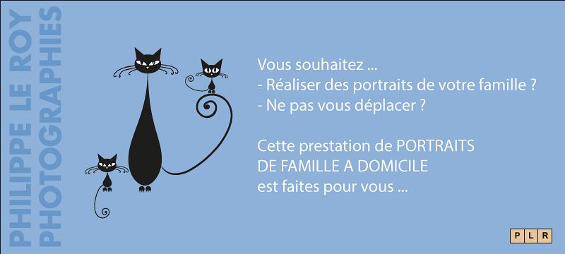 portrait-famille.png
